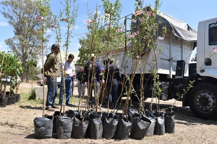 FRUTIHORTICULTURA EN SAN LUIS: EL GOBIERNO IMPULSA EL DESARROLLO DE PARCELAS HORTÍCOLAS Y FRUTÍCOLAS EN EL NORTE PROVINCIAL